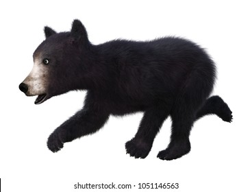 ea8da05f6de 3D rendering of a black bear cub isolated on white background