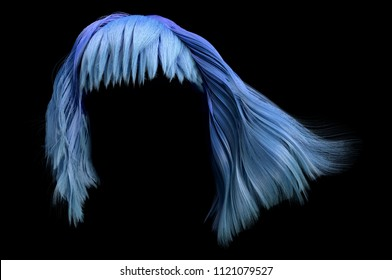 3d rendering of blue wig isolated on black background. Beauty fashion. Ombre gradient coloring. Realistic haircut long wavy bob with bangs. Trendy woman short hairs.