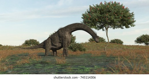 3d rendering of the brachiosaurus grazing in pond waters