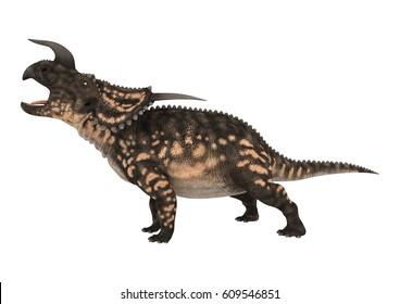 3D rendering of a ceratopsian dinosaur Einiosaurus isolated on white background