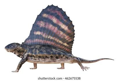 3D rendering of Dimetrodon.