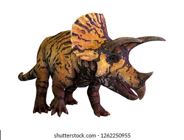 3D rendering of a dinosaur Triceratops  isolated on white background