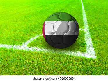 3D rendering football ball with the national flag of United Arab Emirates  ball with Green grass background