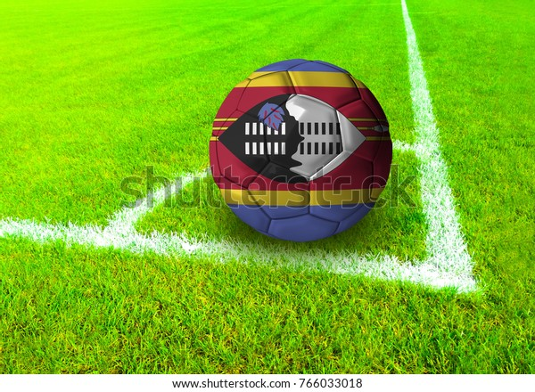 3D rendering football ball with the national flag of Swaziland ball with Green grass background