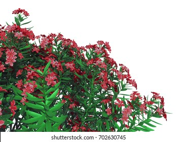 3d rendering of a foreground flower bush isolated on white