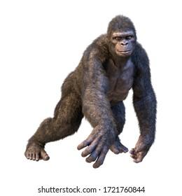 Rendu 3D de singe gorille isolé sur fond blanc