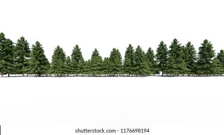 3d rendering of a group of tree raw for architectrural background use isolated on white