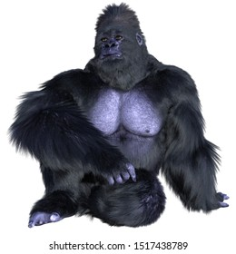 3d rendering high definition hairy gorilla  isolated on white