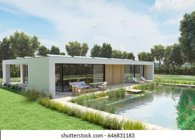 3d rendering. house with an environmental pond pool.