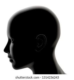 3d rendering illustration of human