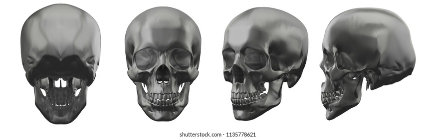 3d rendering illustration of metal skull collection