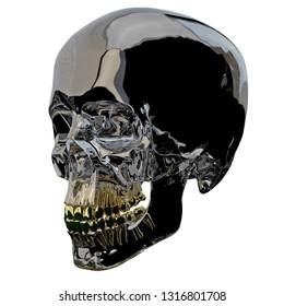 3d rendering illustration of skull anatomy