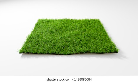 3D rendering illustration top view square green grass field isolated background