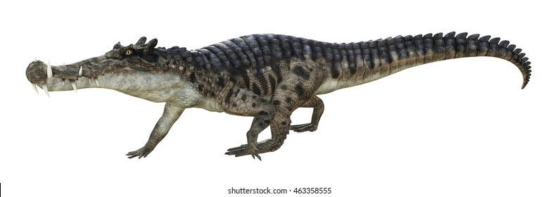 3D rendering of Kaprosuchus.