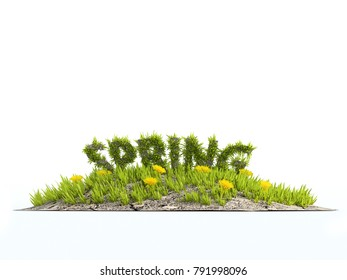 3D rendering of little grass island with yellow flowers and grass-covered Spring word on white background