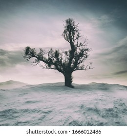 3D rendering of a lonely winter tree on snow covered cold landscape with majestic clouds on the background