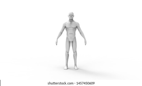 3d rendering of a male cad model person isolated in white background
