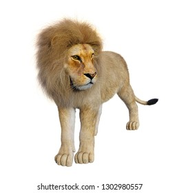 3D rendering of a male lion isolated on white background
