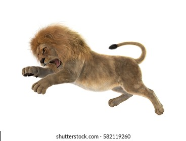 3D rendering of a male lion jumping isolated on white background