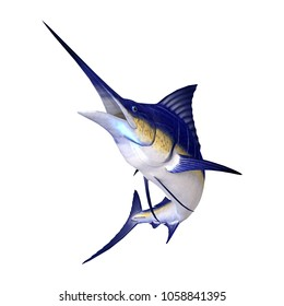 3D rendering of a marlin fish isolated on white background