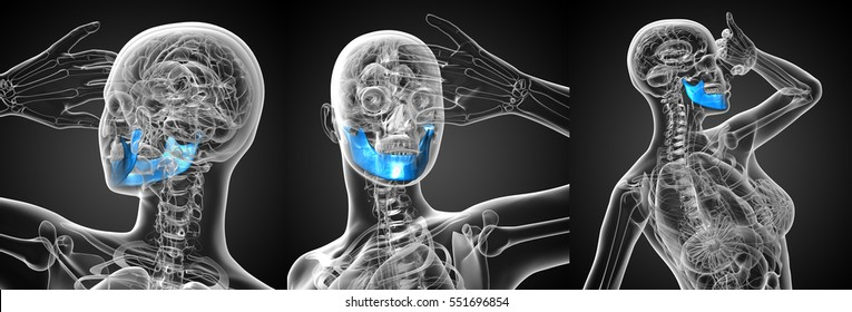 3D rendering medical illustration of the blue jaw bone x-ray collection