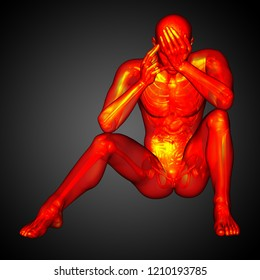3d rendering medical illustration of the human anatomy - front view