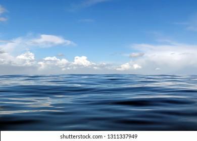 3d Rendering of Ocean view