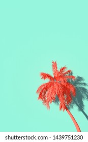3D rendering of a palmtree in front of a turquoise wall