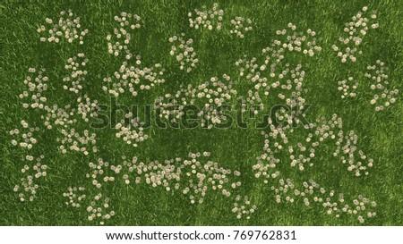 3 d rendering pattern grass white flowers stock illustration 3d rendering of a pattern grass with white flowers mightylinksfo
