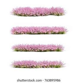 3d rendering of pink grass