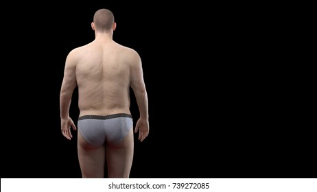3D Rendering : Portrait of standing male endomorph (heavy weight) body type, Back view