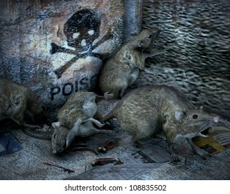 3d rendering of rats as illustration