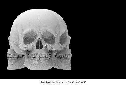 3d rendering. A several direction faces of Halloween human head skull bone isolated on black background.