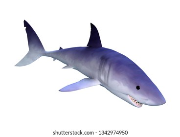 3D rendering of a shark isolated on white background