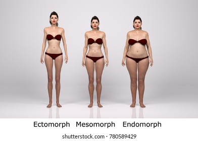 3D Rendering : standing female body type illustration : ectomorph (skinny type), mesomorph (muscular type), endomorph(heavy weight type), front view