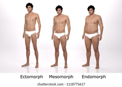 3D Rendering : standing male body type : ectomorph (skinny type), mesomorph (muscular type), endomorph(heavy weight type), Front view