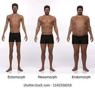 3D Rendering : standing male body type illustration : ectomorph (skinny type), mesomorph (muscular type), endomorph (heavy weight type),Front View