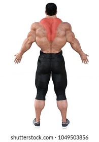 3d rendering strong man with trapezius localization in red isolated on white.