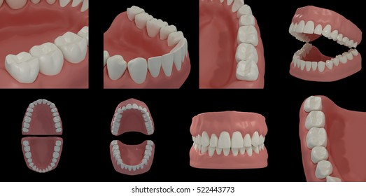 3D rendering of teeth collection on black background