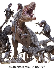 3D rendering of a Tyrannosaurus Rex getting swarmed by a pack of Dakotaraptors isolated on a white background.