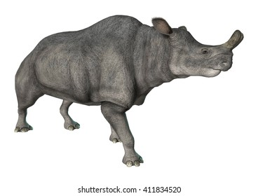 3D rendering of a walking Brontotherium isolated on white background