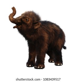 3D rendering of a woolly mammoth baby isolated on white background