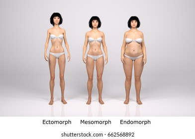 3d standing female body type illustration : ectomorph (skinny type), mesomorph (muscular type), endomorph (heavy weight type) ,front View