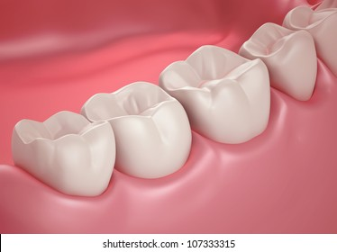 3D teeth or tooth closeup illustration, side view