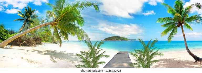 3d Wallpaper design with beach and palm trees for photomural