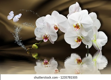3d wallpaper, orchids reflected in water on silk background. Flower theme - this is a trend in design. Celebration 3d background.