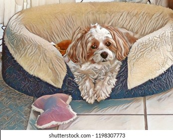 Abstract artistic rendering of a beige and white adorable bichon shih tzu dog in bed with fluffy pink pillow.