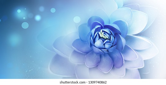 abstract background with beautiful lily flower on bright background