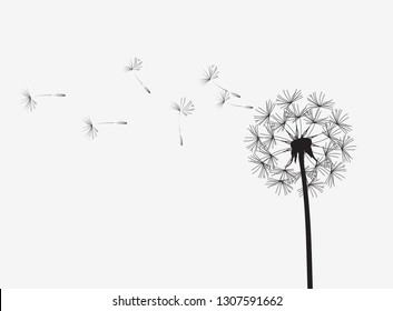 Abstract background of a dandelion for design. The wind blows the seeds of a dandelion. Template for posters, wallpapers, posters. Raster illustration