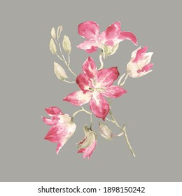 Abstract beautiful illustration of a branch of a blooming orchid painted with paints on paper.Stylish sketch for your design and decoration.